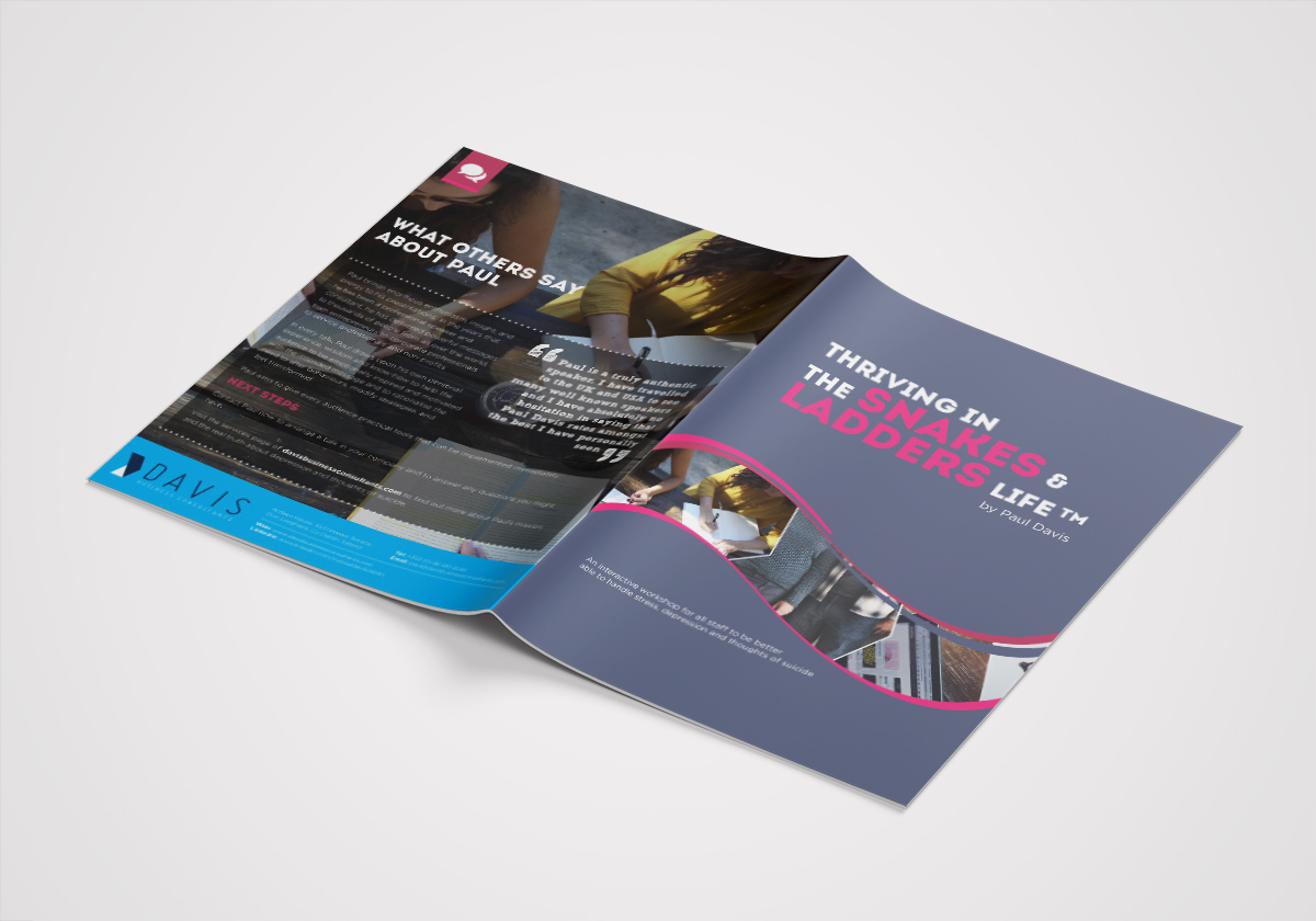 Paul Davis Business Consultants Dublin, Brochure Design by Pretty Owl Designs